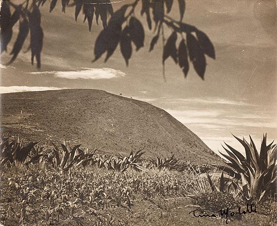 LOT 1043Tina Modotti (1896–1942) Vintage silver print Landscape, Mexico c. 1926Opening bid: EUR 12,000