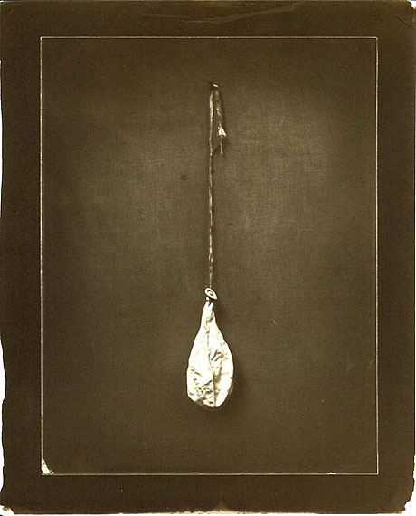 Ben Cauchi