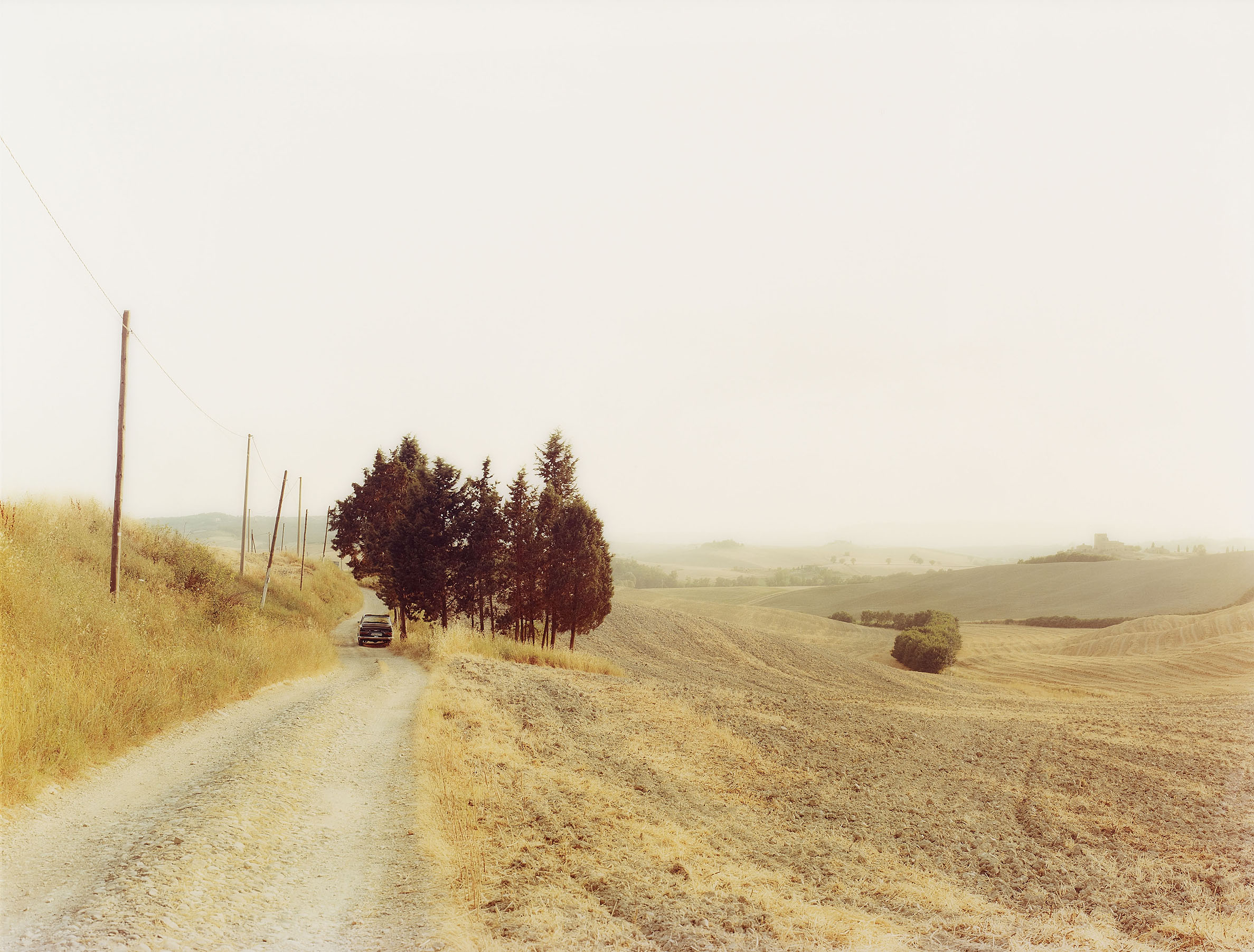 Elger Esser, Radi, Italien, 2002. Chromogenic print, face-mounted to plexiglass. 174 x 229 cm, Estimate € 20,000 – 25,000