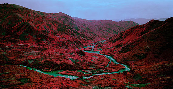 Richard Mosse | Love Is The Drug, 2012 | Jack Shainman Gallery, New YorkCourtesy of Art Basel