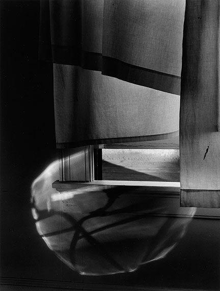 Lot 117