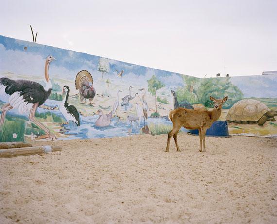 Heinrich Voelkel, Wiesbaden - The terrible city - Gaza, Palästina; © Heinrich Voelkel