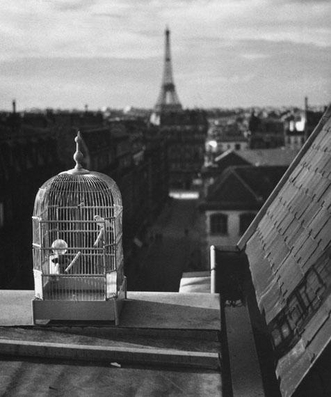 Rue de Vaugirard, 1931, Paris © Estate of André Kertész
