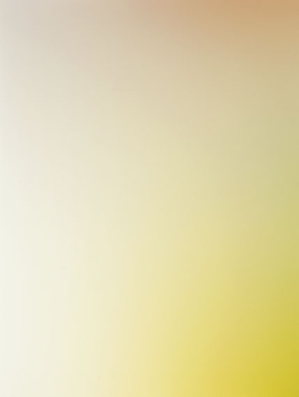 o.T / ÜberstrahlungenFarbfotogramme / Farbbelichtungen auf Fotopapier39,5x29,5 cmUnikat2011/12