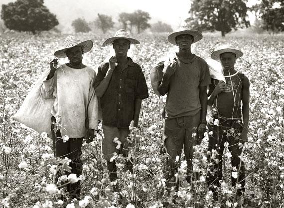 Cotton Farmers, Koulegou Field, Tanguieta, Benin, 2011 © Albert Watson