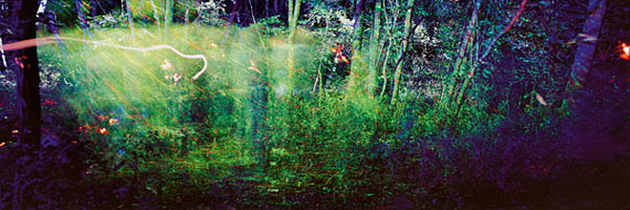 André Wagner: laser forest (2011), 60 x 180 cm, from the series sound rooms © André Wagner