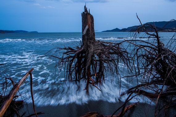 © Daniel Berehulak: Australien, Getty ImagesEin Jahr nach dem Tsunami am Strand von Rikuzentakata, Japan