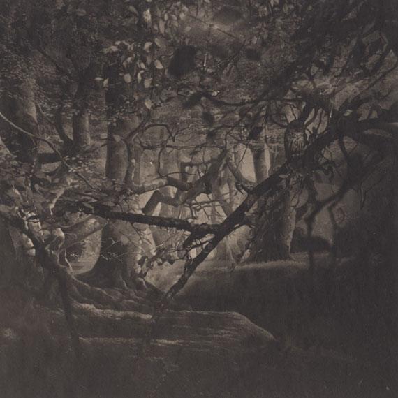 Urban Forests, Central Park #22, New York #22, 2011Handmade platinum/palladium print on Japanese gampi paper. Edition of 9. Image size :  19 x 19 cm