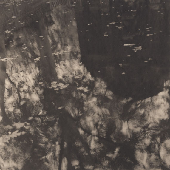 Urban Forests, Luxembourg Gardens #6, Paris, 2012 
