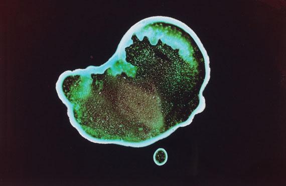 Ralf Cohen: Insel, 2013 -  Farbe auf Glas, C-Print, 60 x 94 cm
