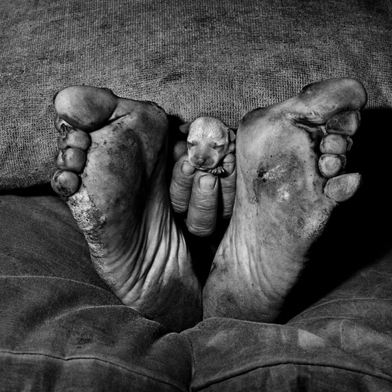 Roger Ballen: Puppy between feet, 1999
