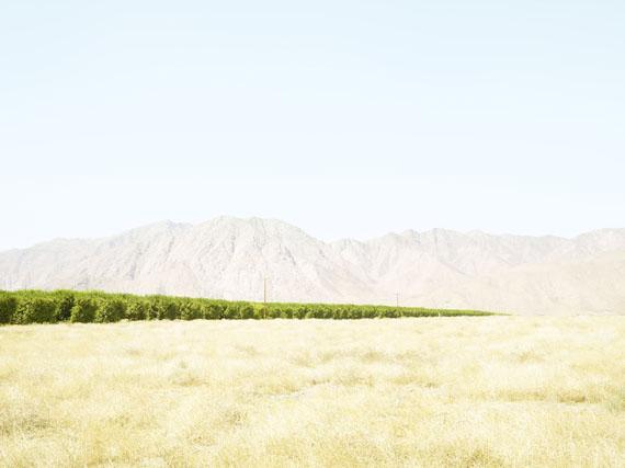 Henrik Spohler: Grapefruitanbau im Borrego Valley, USA, 2011, 109 x 133 cm, Pigmentprint © Henrik Spohler