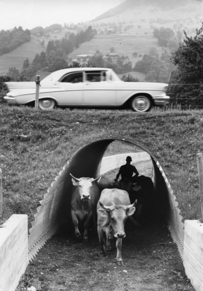 """""""Eine Strassenunterführung fürs Vieh"""", 1964 Foto Arnold Odermatt, Stans"""