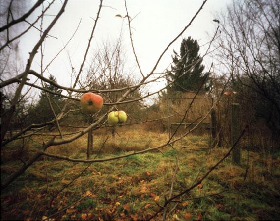 Hanns Zischler: Letzte Süße, 1999