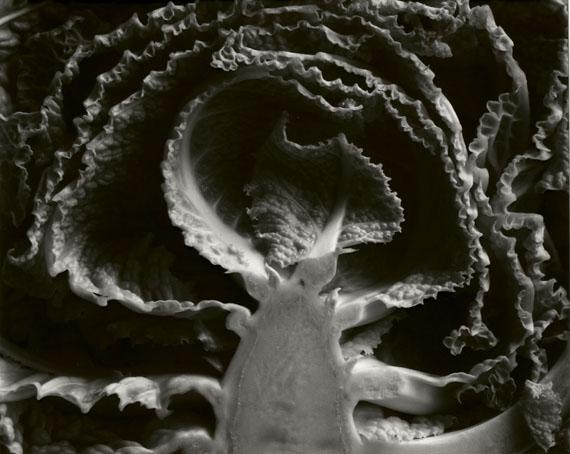 """Kale Halved"" (1930)"