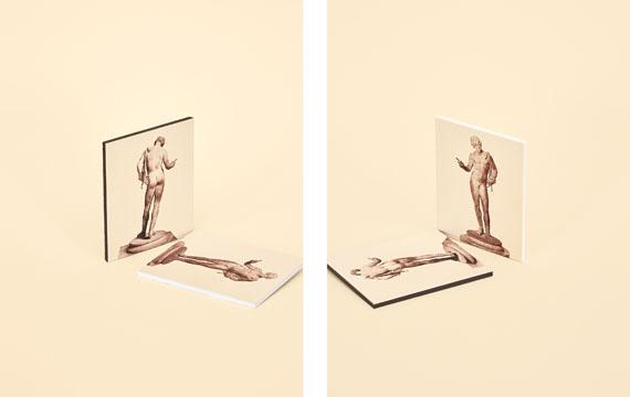Samuel Henne: »untitled (narcissus juxtaposed)« aus »constellation«, 2013je 42 x 32 cm, Fine Art Print