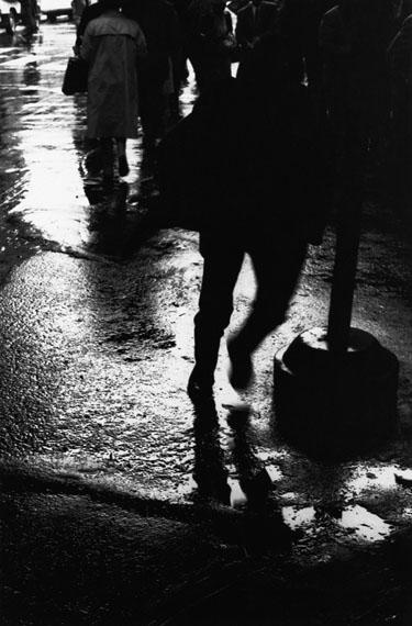 © Shin Yanagisawa