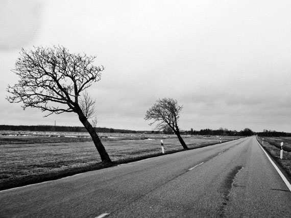 Moises Saman, Germany, Rugen Island, Mecklenburg-Vorpommern, April 2013. Trees bent by wind on a country road in Rugen Island.