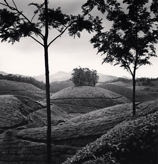 Michael KennaTea Estates, Study 1, Munnar, India 2008Edition von 45Silver Gelatin Print20 x 20 cm© Michael Kenna / Courtesy of Bernheimer Fine Art Photography