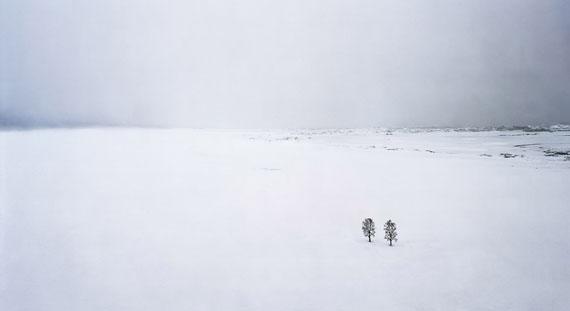 Thomas Wrede: Bäume im Schnee, 2010, 95 x 170 cm