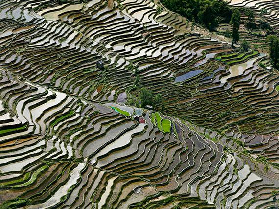 EDWARD BURTYNSKYRice Terraces #3a & 3b, Western Yunnan Province, China (a), 2012C-Print 39 x 52 inches / 99,1 x 132,1 cm
