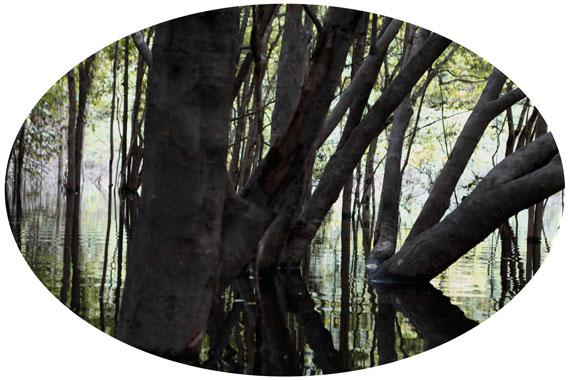 Luzia SimonsIgapo Nr. 3, 2013Dye Transfer38,8 x 58,4 cm ohne RahmenEd. 5