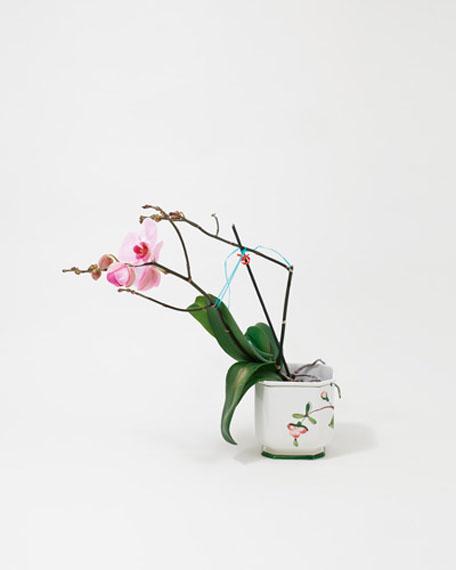 """Nele Gülck """"Orchidee im Übertopf 1"""" aus der Serie """"Auf ewig"""""""