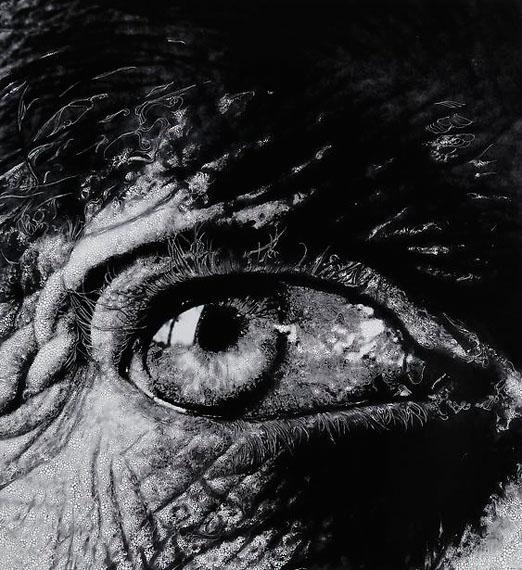 Eye #8, 2012, ©Sebastiaan Bremer / Courtesy of Edwynn Houk Gallery, New York
