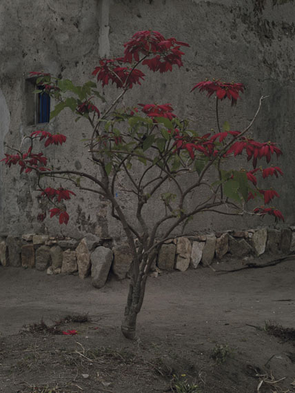 Musambira 2014 © Anoek Steketee