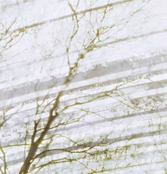 Michael WeselyJüdischer Friedhof, Berlin (13.1.2011 - 13.1.2012)C-Print125 x 120 cmDiasec, Metallrahmen© Michael Wesely