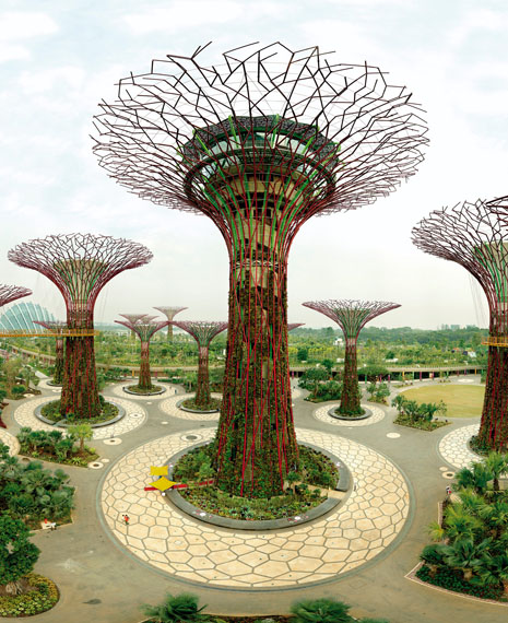 Olaf Otto Becker: Supertree Grove, Gardens by the Bay, Singapore, 10/2012