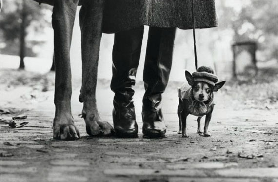 """Felix, Gladys and Rover, New York City, 1974"", Silver gelatin print, 20 x 24 inches © Elliott Erwitt"