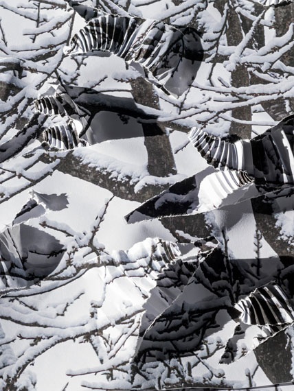 Detail 'Winter', Paper, unique © Hubertus Hamm