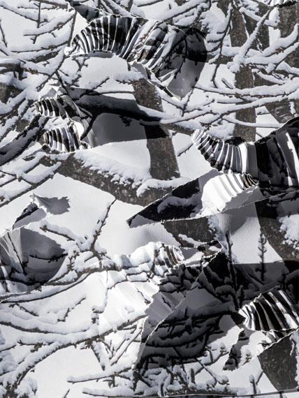 Detail 'Winter', Paper, unique © Hubertus Hamm