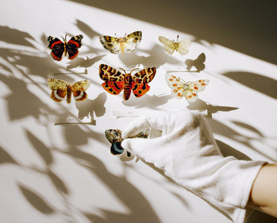 "from ""A Room's Memory""Collector, 2010© Niina Vatanen"