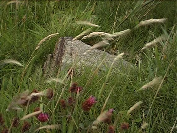 "Christoph Brech: ""The Wind That Shakes the Barley"", 2008 7:55 min"