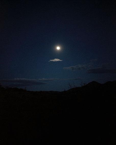 oracle, stars fell on alabama, 2012 © Regine Petersen, Courtesy galerie jo van de loo