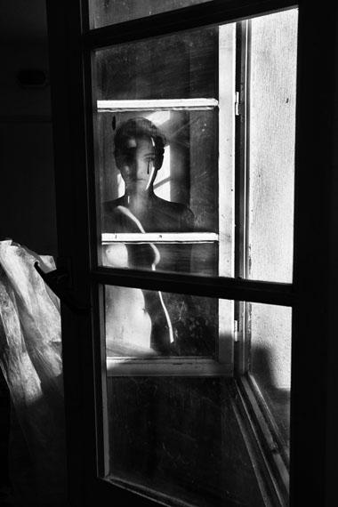 © Karin Székessy: 'Cotta am Fenster', 2013