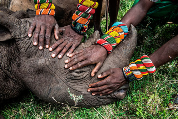 © Ami Vitale, USA, National Geographic