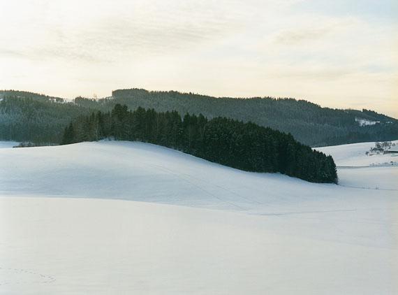 Bernhard Fuchs: Dobring, Winter 2010