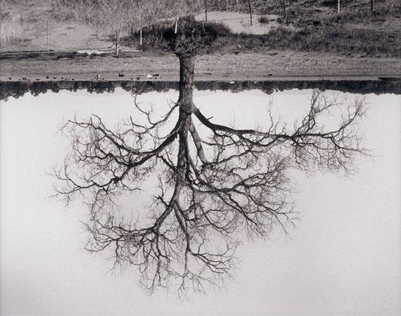 Rodney GrahamOak Trees, Red Bluff (2), 1993 - 2000