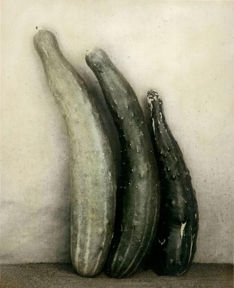 Ingar Krauss: ohne Titel, Zechin 2011, 75 x 61 cm, Bromsilberpapier & Ölfarbe