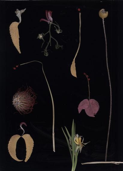Luzia Simons: Blacklist Nr. 1, 2015, Scannogramm, Pigmentprint auf Harman by Hahnemühle Gloss Art Fibre, je 40 x 29 cm, Ed. 6