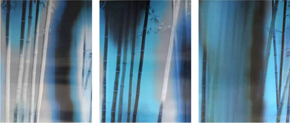 Bamboo No.1, 2015Lenticular photograph, 120cm x 90cm x 3 panels© Lei Han, courtesy M97 Gallery