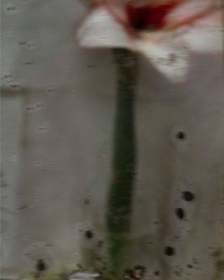 Sarah Moon: Amaryllis, 2012 © Sarah Moon