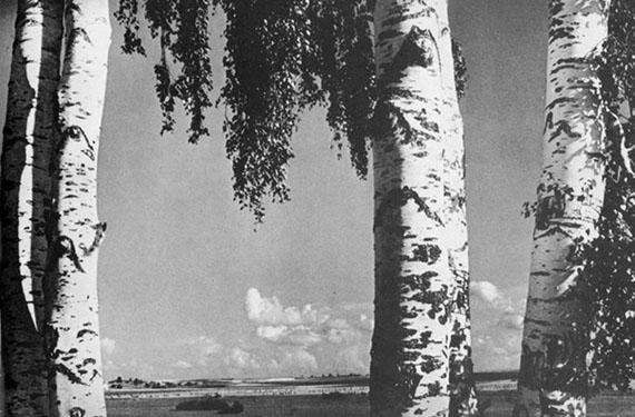 Anatoliy Skurihin. Native land, 1937