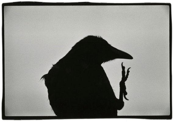 © Masahisa Fukase Archive 'Erimo Cape, 1976' Vintage silver print