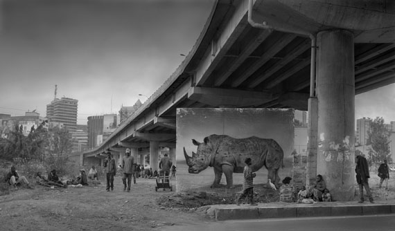 Nick Brandt: Underpass with Rhino & Egret, 2014, 