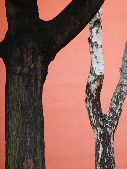 Heidi Specker: Schulhof, aus der Serie: IM GARTEN, 2003 © Heidi Specker / VG BILD-KUNST Bonn, 2016