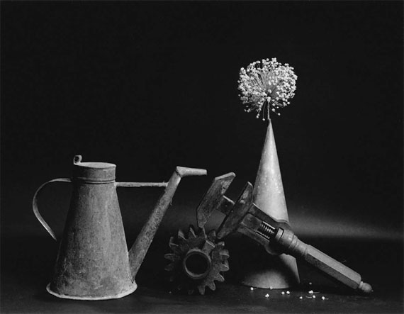 "Michel Medinger: ""Still Life with Leek Bloom"", 2015, Gelatin Silver Print"